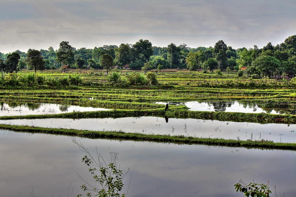 Laos 43