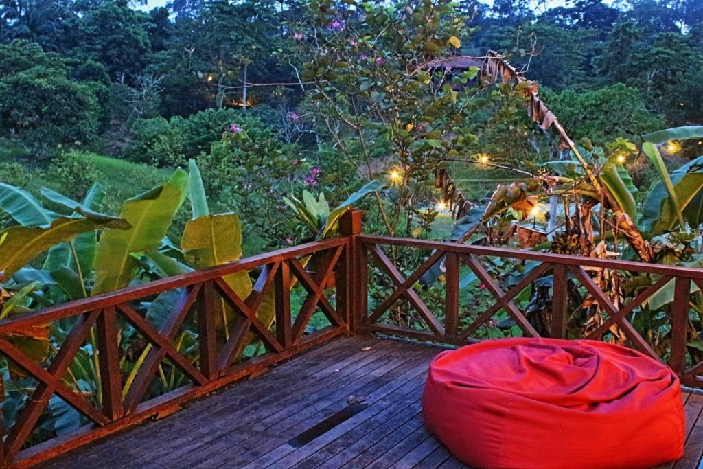 Sabah Borneo 22